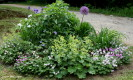 Circular Bed in June