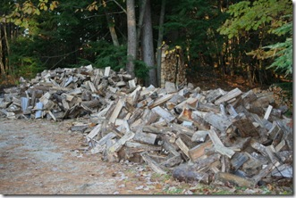 Firewood (photo credit: Jean Potuchek)
