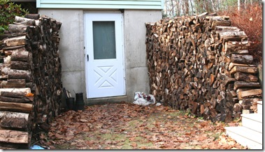 Seasoned wood stacked on either side of the basement door (photo credit: Jean Potuchek)