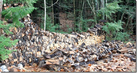 Fallen section of woodpile (photo credit: Jean Potuchek)