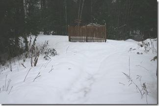 Back garden in December (photo credit: Jean Potuchek)