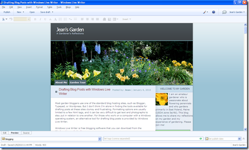 Preview Screen - Windows Live Writer