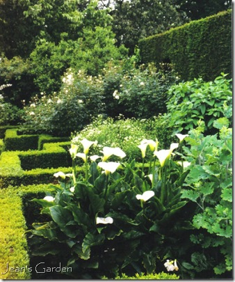 White garden at Sissinghurst (photo credit: Jean Potuchek)