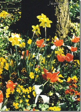 Spring flowers at Giverny (photo credit: Jean Potuchek)