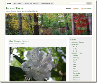 In the Trees - screenshot