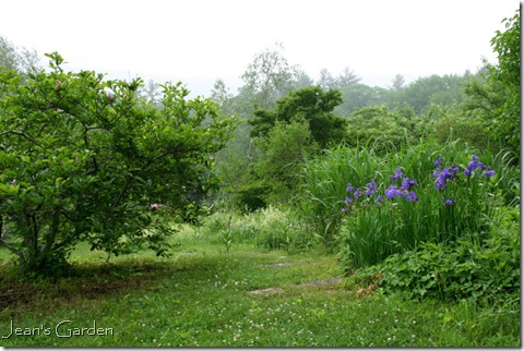 A beckoning path at Flower Hill Farm  (photo credit: Jean Potuchek)