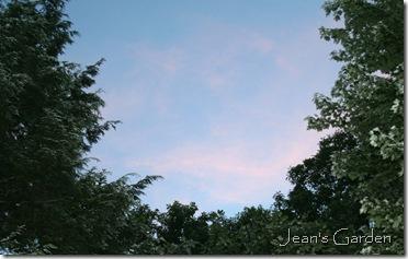 Sunrise colors (photo credit: Jean Potuchek)