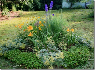 The circular bed in July (photo credit: Jean Potuchek)