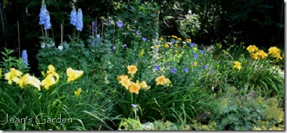 Original Jean's Garden blog header (photo credit: Jean Potuchek)