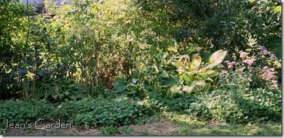 Large flower bed at back of Gettysburg property (photo credit: Jean Potuchek)