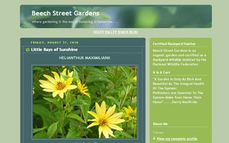 screenshot - Beech Street Gardens