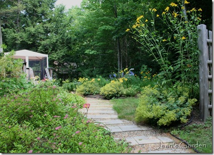 Back garden entrance in July (photo credit: Jean Potuchek)