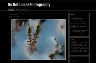 screenshot - On Botanical Photography