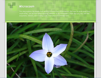 screenshot - Microcosm