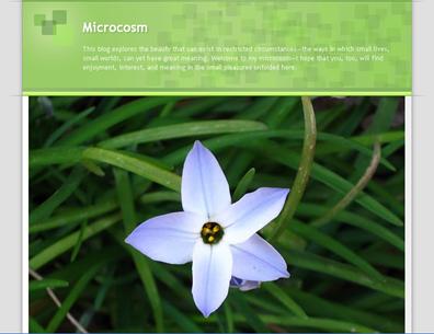screenshot - Microcosm