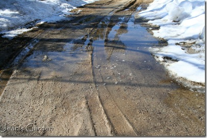 The beginning of mud season in my driveway (photo credit: Jean Potuchek)