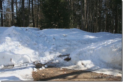 Large snow bank at end of driveway (photo credit: Jean Potuchek)