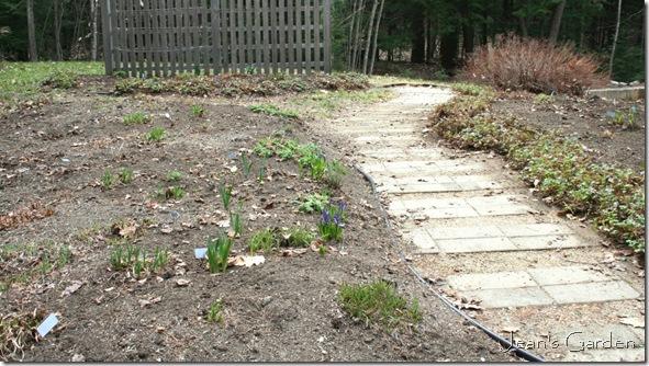 The back garden after spring clean-up (photo credit: Jean Potuchek)