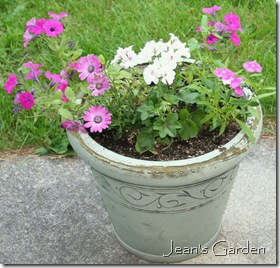 Patio container (photo credit: Jean Potuchek)