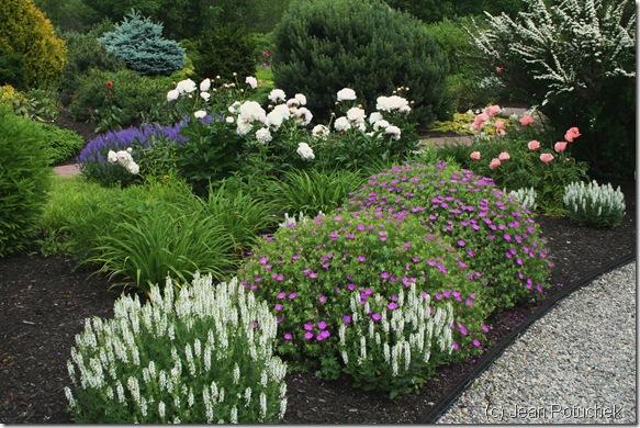 Another beautiful garden vignette at Pineland Farms (photo credit: Jean Potuchek)