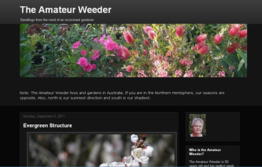 screenshot - The Amateur Weeder