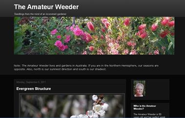 screenshot - The Amateur Weeder