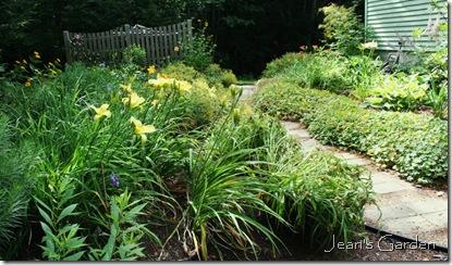 The back garden in summer (photo credit: Jean Potuchek)
