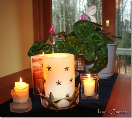Cyclamen blooms and candlelight for the winter solstice (photo credit: Jean Potuchek)