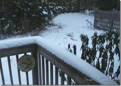Cold January morning (photo credit: Jean Potuchek)