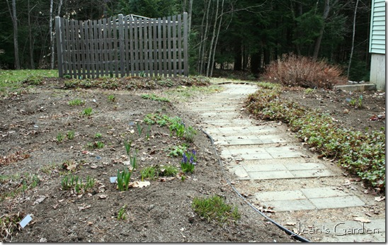 The back garden in late April 2011 (photo credit: Jean Potuchek)