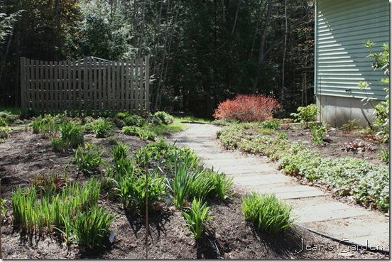 The back garden in late April 2012 (photo credit: Jean Potuchek)