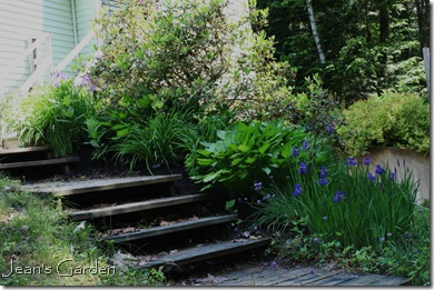 Stairs from driveway to main level of house  (photo credit: Jean Potuchek)