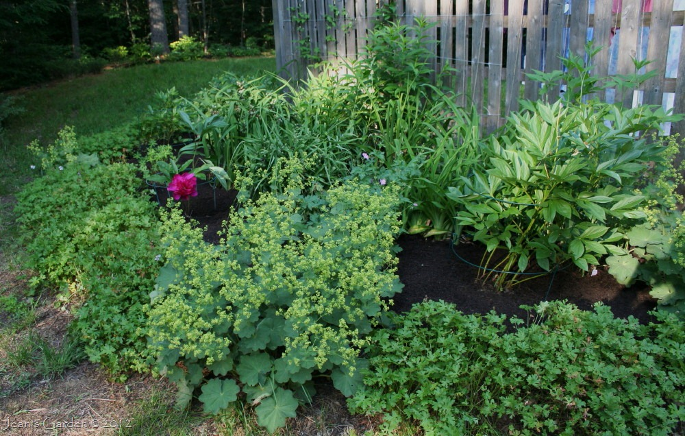 ... satisfying look of a mulched flower bed (photo credit: Jean Potuchek