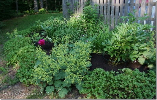 The satisfying look of a mulched flower bed (photo credit: Jean Potuchek)