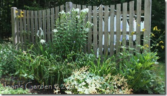 fence border august2012