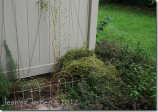 gburg herb bed mess