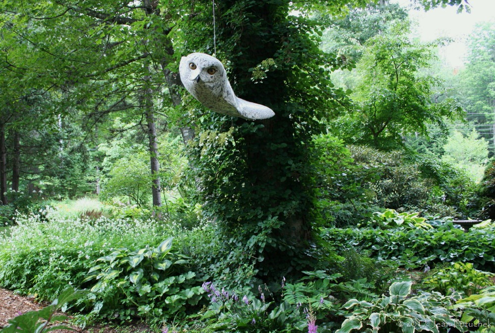 How To Plant Grass Under Oak Trees : Andreas von huene snowy owl sculpture in the primozich garden photo