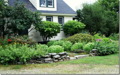 xanh front garden