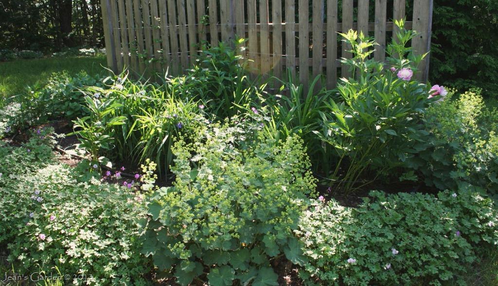 History of the Garden | Jean's Garden on backyard design zone 6, garden design zone 4, garden design zone 8, garden design zone 9, rain garden plants zone 6, rock garden plants zone 6,