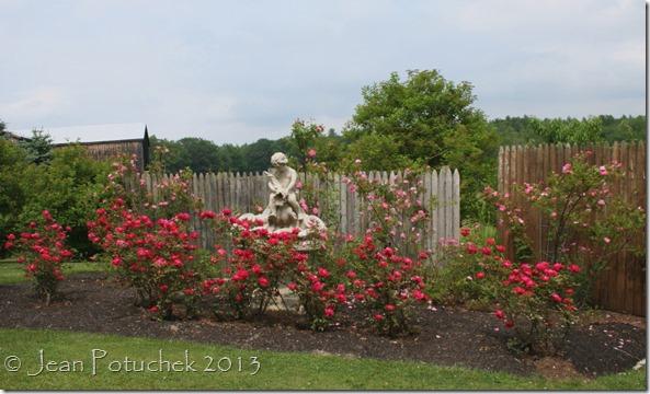 Laurie rose garden