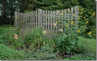 fence border august 2013