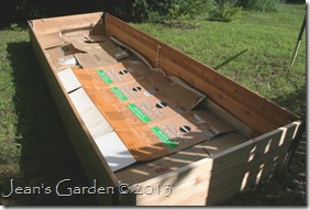 raised bed with cardboard