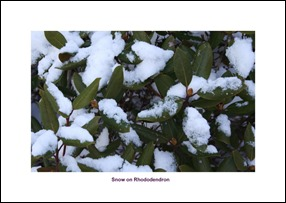December_2