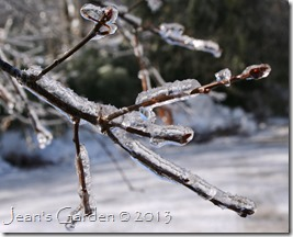 ice prisms