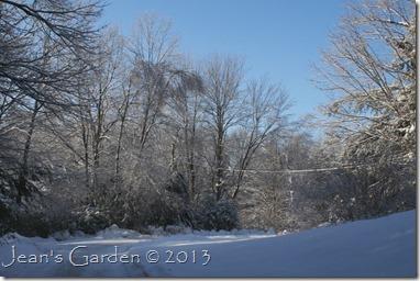 icy scene 2013