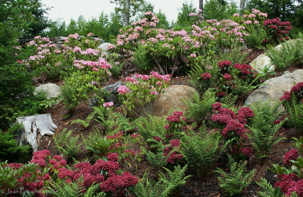 Gardens worth visiting coastal maine botanical gardens for Planting a garden