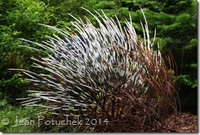 porcupine sculpture