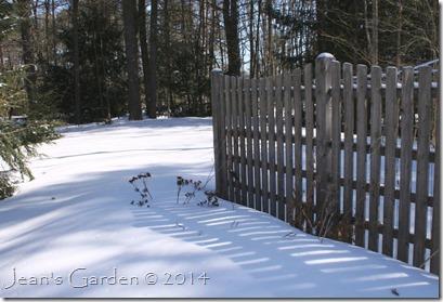 March garden 2014
