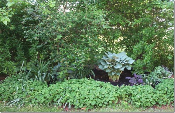 gburg last back flowerbed