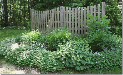 fence border june 2014